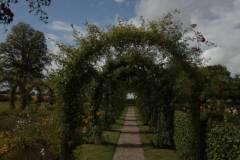 2020-08_Besuch_Danmark_I_14